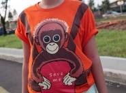Orangutan_zps690ba8c6